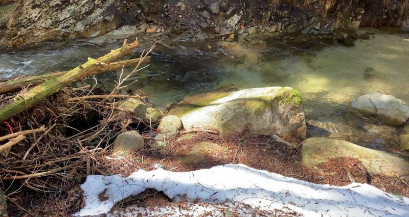 斐伊川水系 渓流釣り