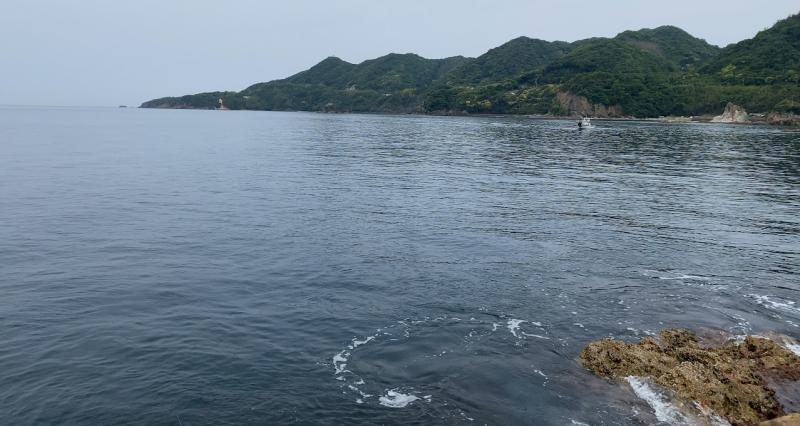 大社湾 エギング アオリイカ 幕島渡船